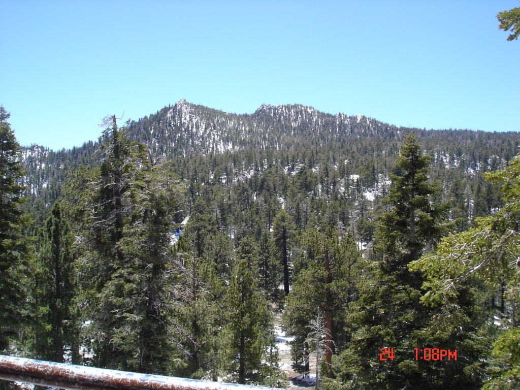 A view from the Palm Springs Aerial Tramway