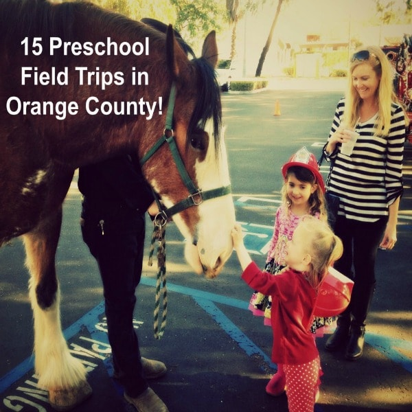 There are simply not enough hours in the day to answer all the questions that preschoolers like to ask. One of the best ways to satisfy a little preschooler's mind is to take them on a Preschool Field Trip. So, check out this list of the Best Preschool Fields in Orange County for inspiration!