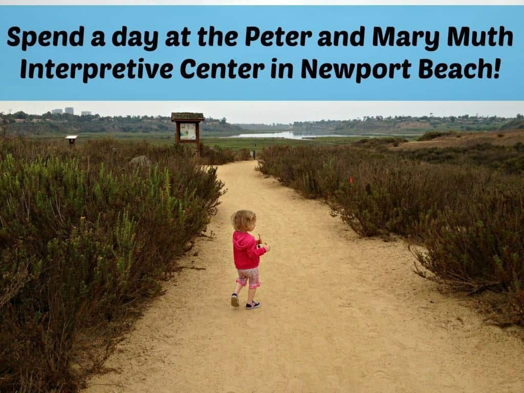 Spend the day for free at the Peter and Mary Muth Interpretive Center in Newport Beach!