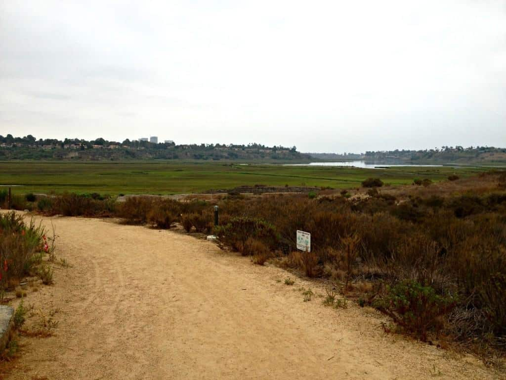 A Field Trip to the Peter and Mary Muth Interpretive Center in Newport Beach, California.  They offer weekly toddler and preschool programs, family hikes and field trips year round.
