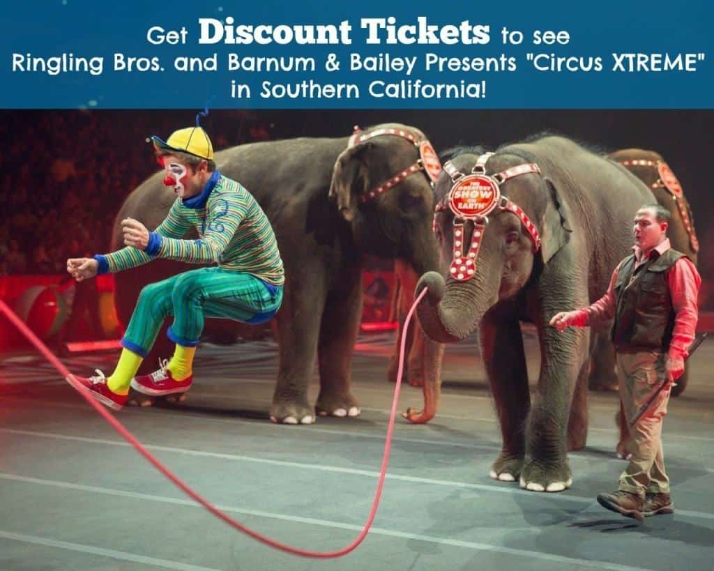 """Get discount tickets to see Ringling Bros. and Barnum & Bailey Presents """"Circus XTREME"""" at STAPLES Center, Honda Center and Citizens Arena!"""