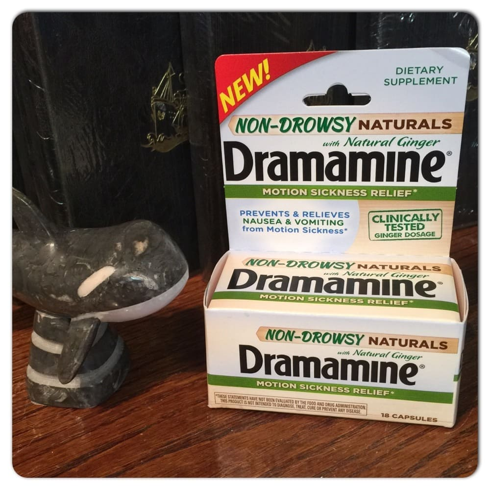 A Whale Watching Success Story With The Help Of Dramamine