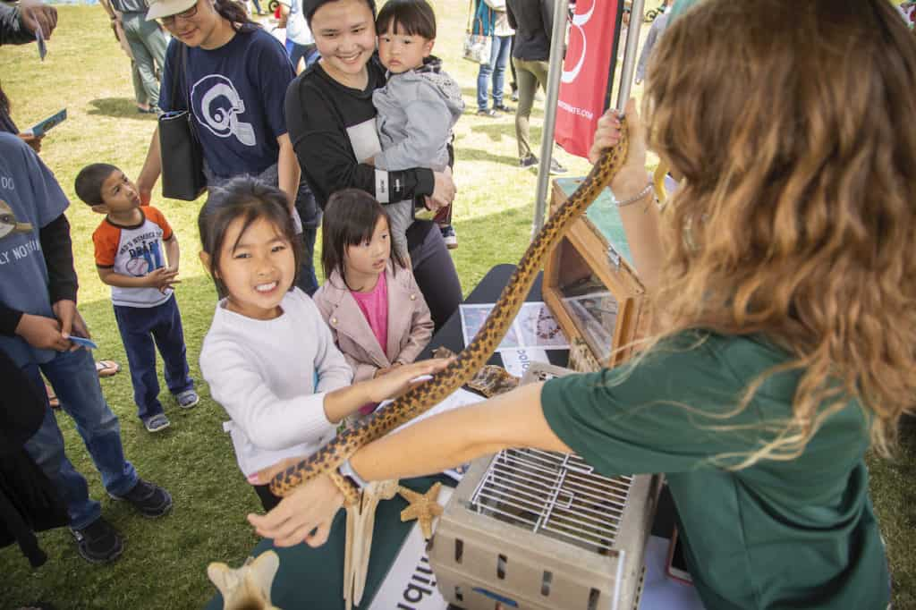 Girls petting a snake at OC STEAM Fest on April 25