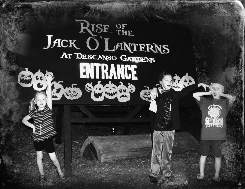 Discount Tickets to see RISE of the Jack O'Lantern in Los Angeles!