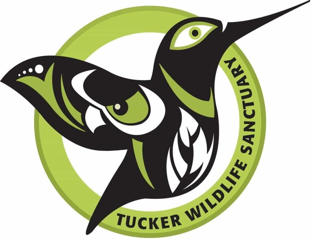 Attend Bat Night at Tucker Wildlife Sanctuary on October 17 in Orange County!