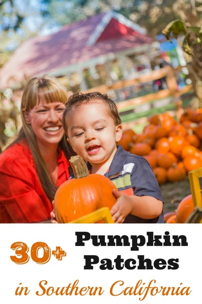 Your Complete Guide To 30 Pumpkin Patches In Southern California All The Way From