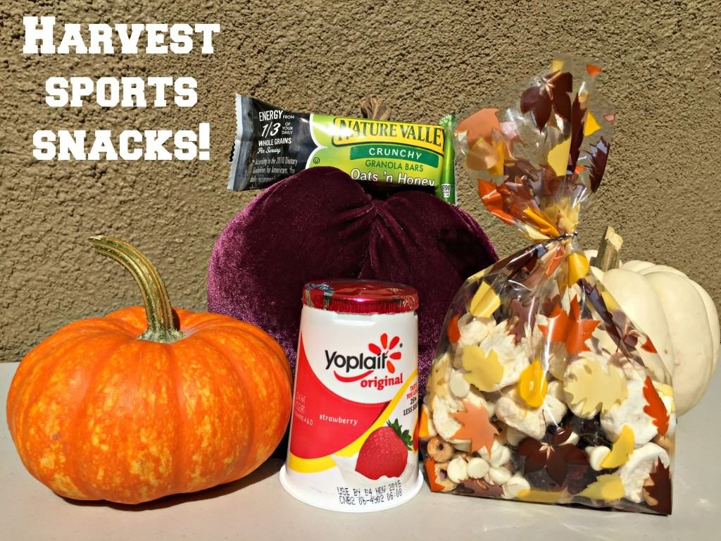 Harvest Snack Ideas for Fall Sports Teams