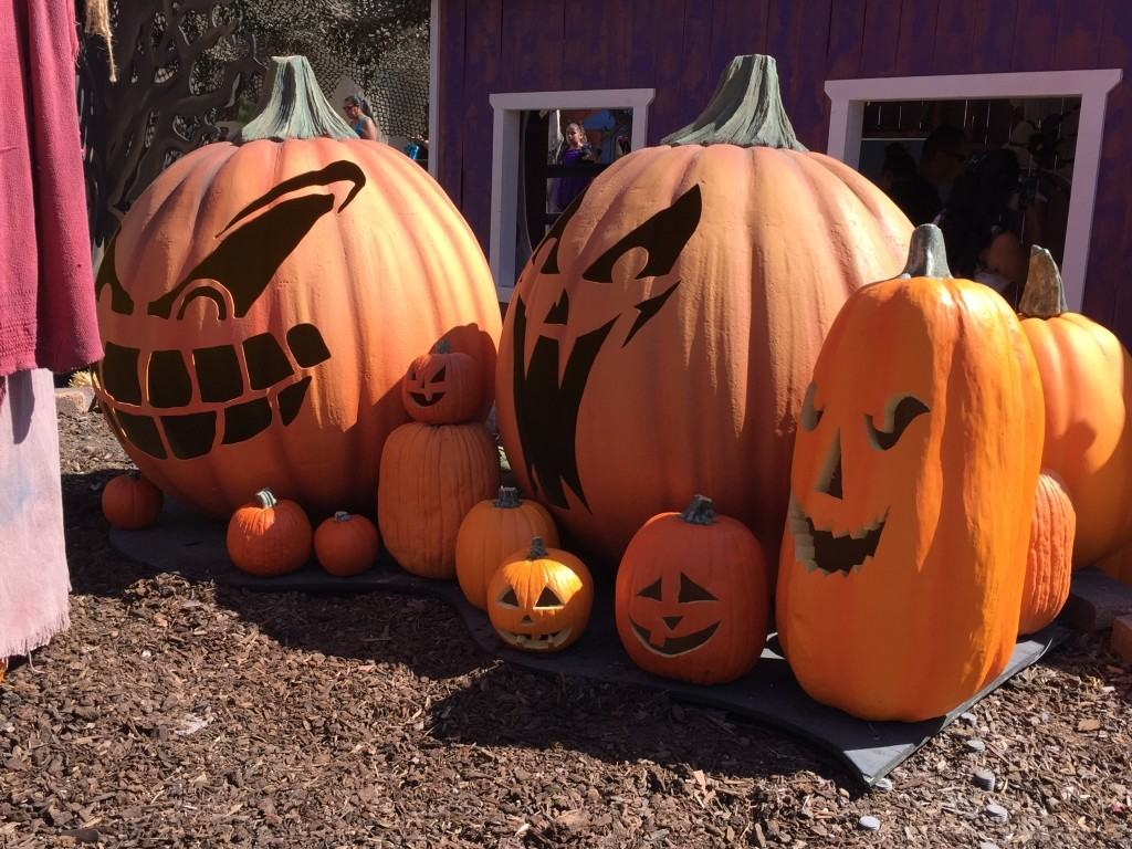 6 Reasons To Visit Knott's Spooky Farm This Halloween
