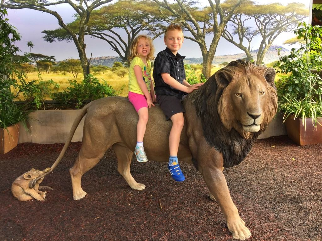 5 Must See Animals At The San Diego Zoo Socal Field Trips