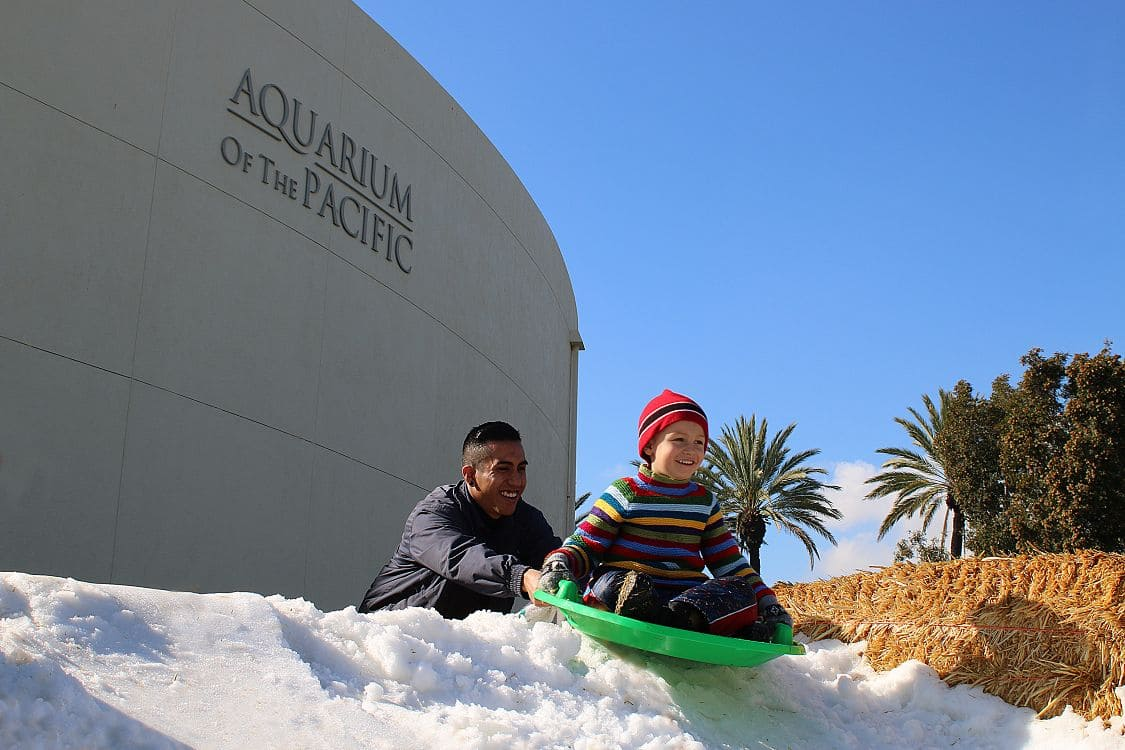 Celebrate the holidays at the Aquarium of the Pacific in Long Beach during their month-long Aquarium Holidays celebration from December 3 through 23! Aquarium Holidays features daily underwater shows with Santa Diver, a Penguin Walk at 10:00 a.m., a display of gingerbread houses and free daily showings of Sleigh Ride 4D. Furthermore, snow will fall in the Great Hall, the Aquarium will be decked with festive décor, and the Aquarium's costumed characters will appear in their holiday outfits daily.