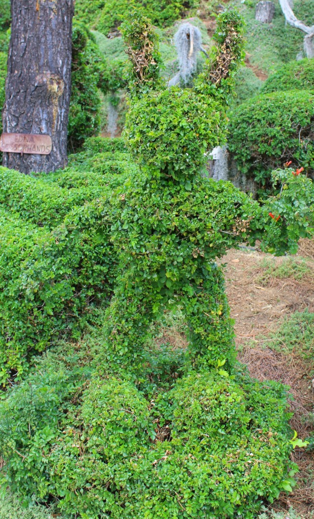 Edna Harper's Topiary Garden in San Diego is made of 50 or so whimsical characters including elephants, whales, a rooster, a bunny, and Mickey Mouse.