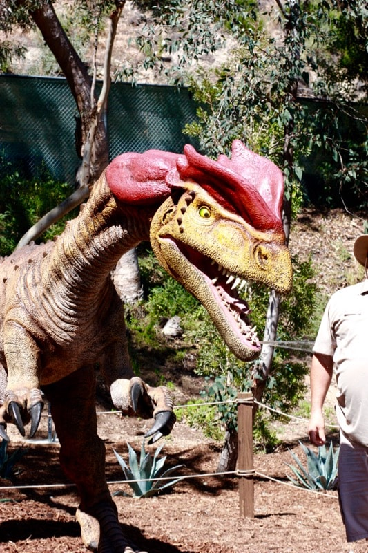 """Dinosaurs: Unextinct at the LA Zoo is made up of animatronic dinosaurs with electronic """"brains"""" that take visitors back in time for a colossal adventure, providing a rare chance to discover a lost world from millions upon millions of years ago while warning about the very real threat of extinction faced today by many endangered species."""