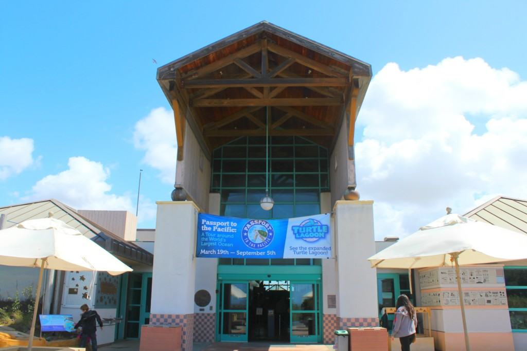 The Living Coast Discovery Center is a small zoo and aquarium educational facility located on the San Diego National Wildlife Refuge, Sweetwater Marsh Unit. The interactive nature center focuses on animals native to the San Diego Bay such as stingrays and sea turtles. They offer field trips for school groups, homeschoolers and scout troops all year round.