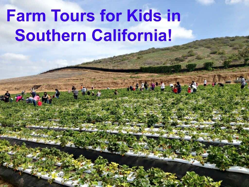 farm tours Southern California