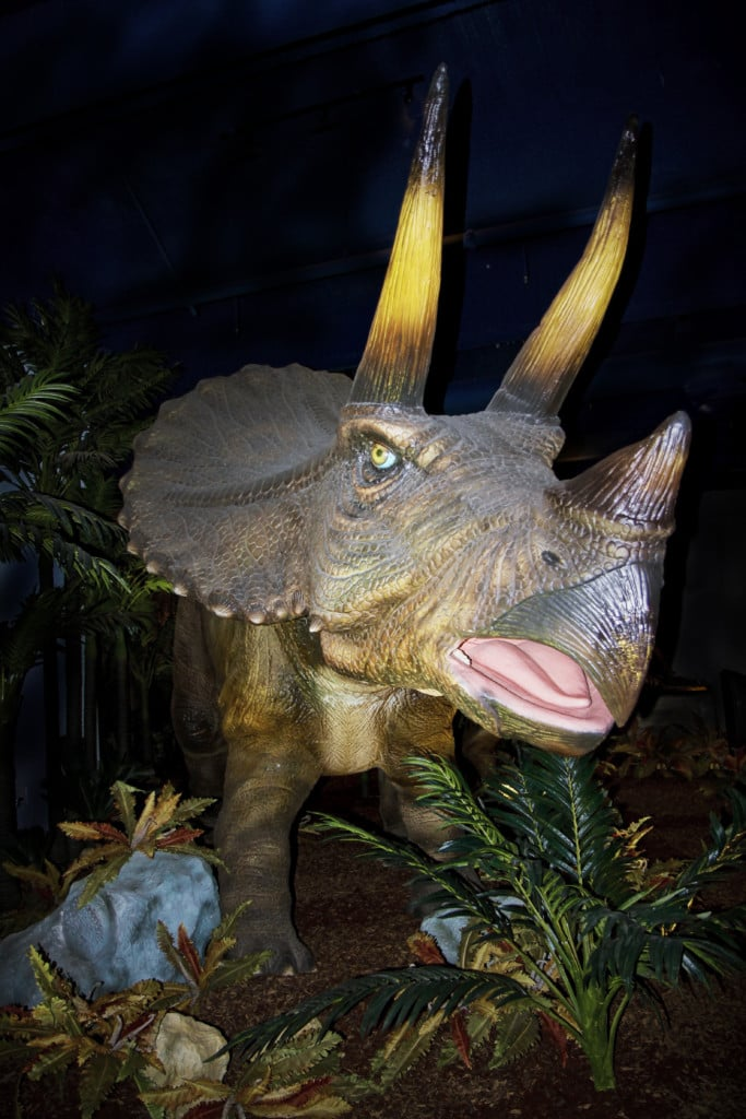 Do you love dinosaurs? Then check out Extreme Dinosaurs at the Discovery Cube OC where you are transported back to see the world's strangest dinosaurs with 17 life-size animatronic creatures.