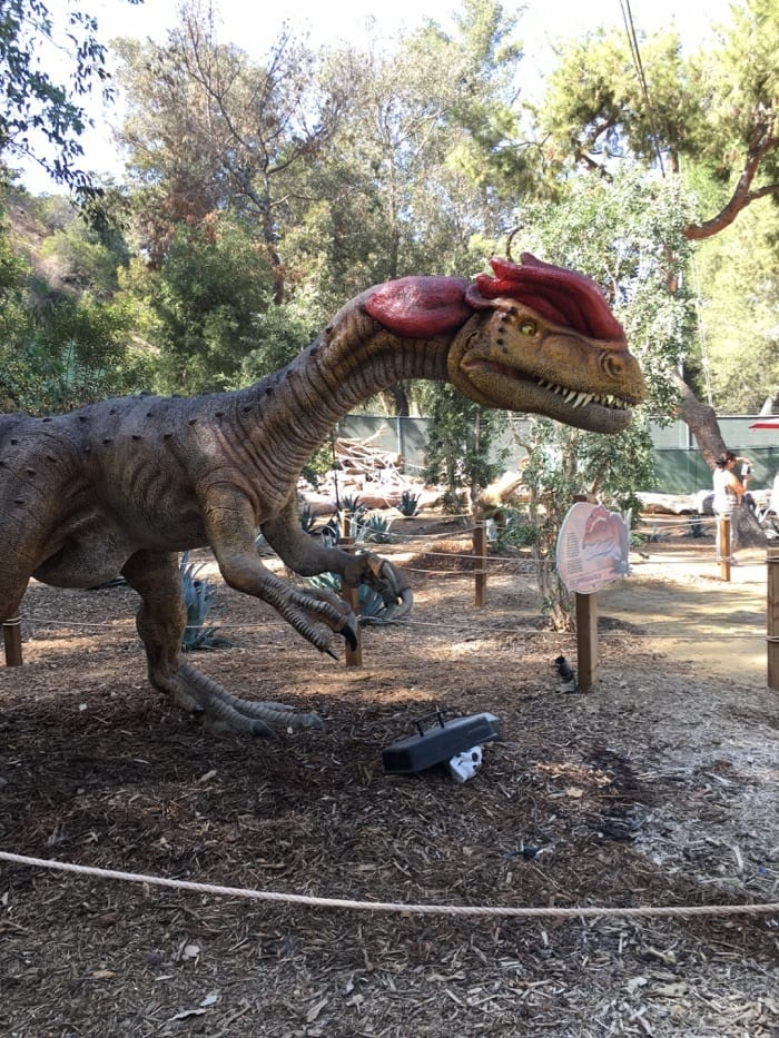 explore boo at the la zoo every weekend in october socal field trips. Black Bedroom Furniture Sets. Home Design Ideas
