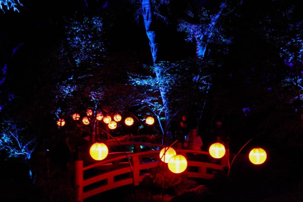 This Holiday Season, Descanso Gardens In Los Angeles, California Will Be  Transformed Into Enchanted