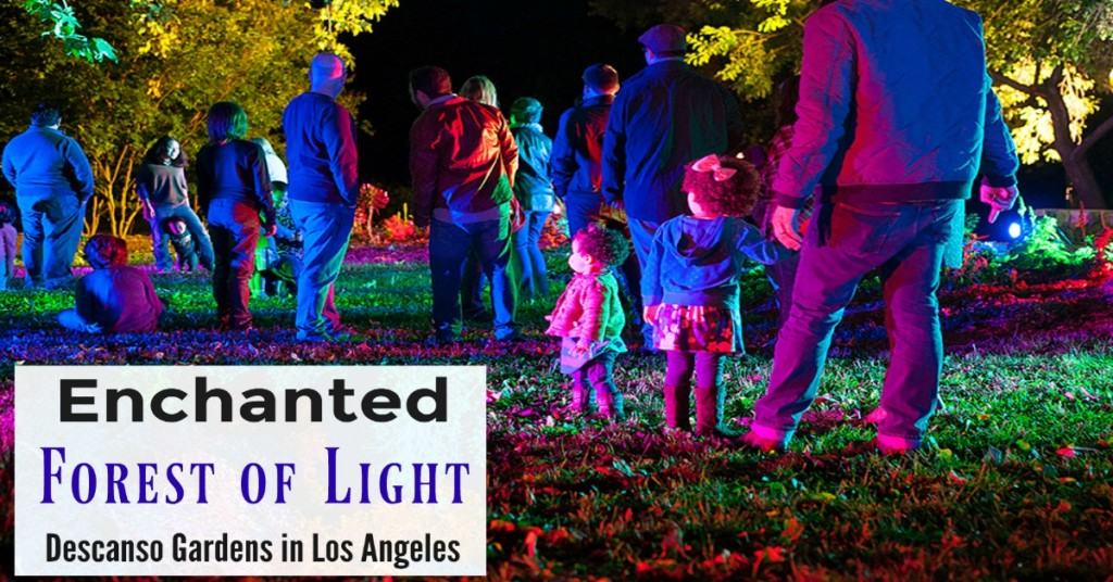 Tickets To Enchanted Forest Of Light At Descanso