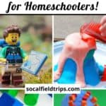 Are you a homeschool parent? Check out these 25 science projects for homeschoolers that are easy to do at home with limited supplies. Not only are these STEM activities great for homeschoolers, but they are also useful for everyday classrooms and children's science lessons.