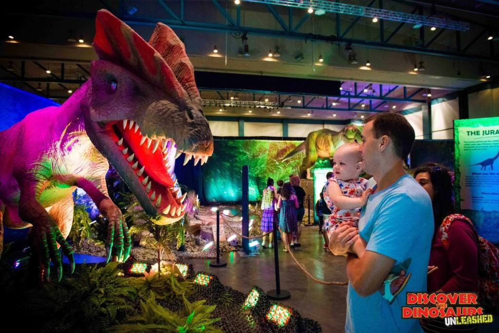 Does your child love dinosaurs? Get discount tickets to Discover the Dinosaurs UNLEASHED coming to the Fairplex in Pomona and OC Fair & Event Center in Costa Mesa this spring! Experience up-close encounters with a lifelike stegosaurus, velociraptor and the king T-Rex in this walk-thru exhibit and more.