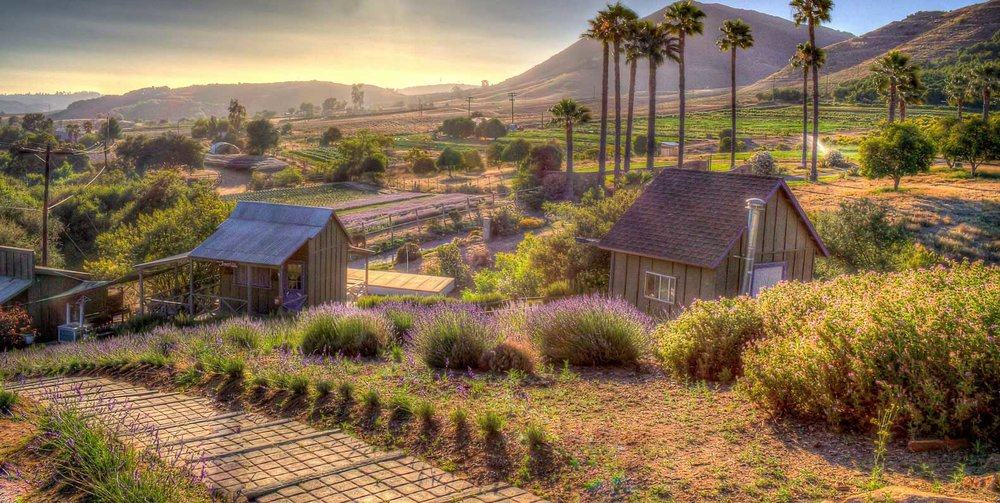 13 Popular Things to Do in San Diego, California