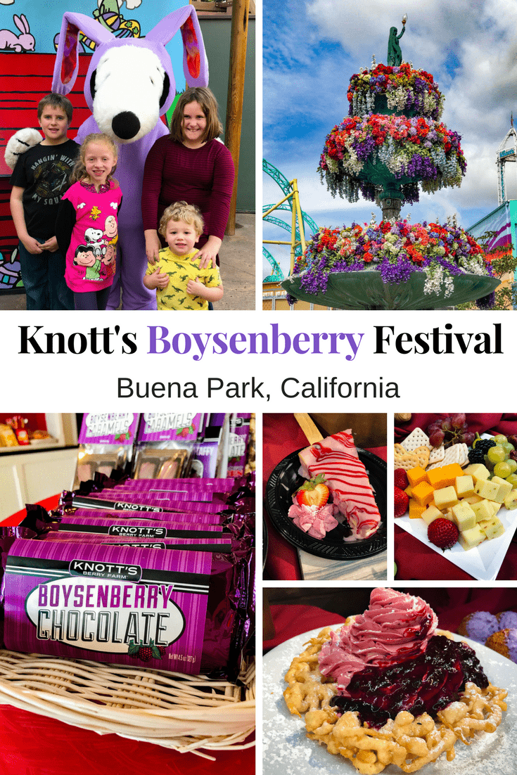 From endless boysenberry food pairings to boysenberry photo ops to a highly contentious boysenberry pie-eating contest, there is something for everyone at the Knott's Boysenberry Festival in Buena Park, California.