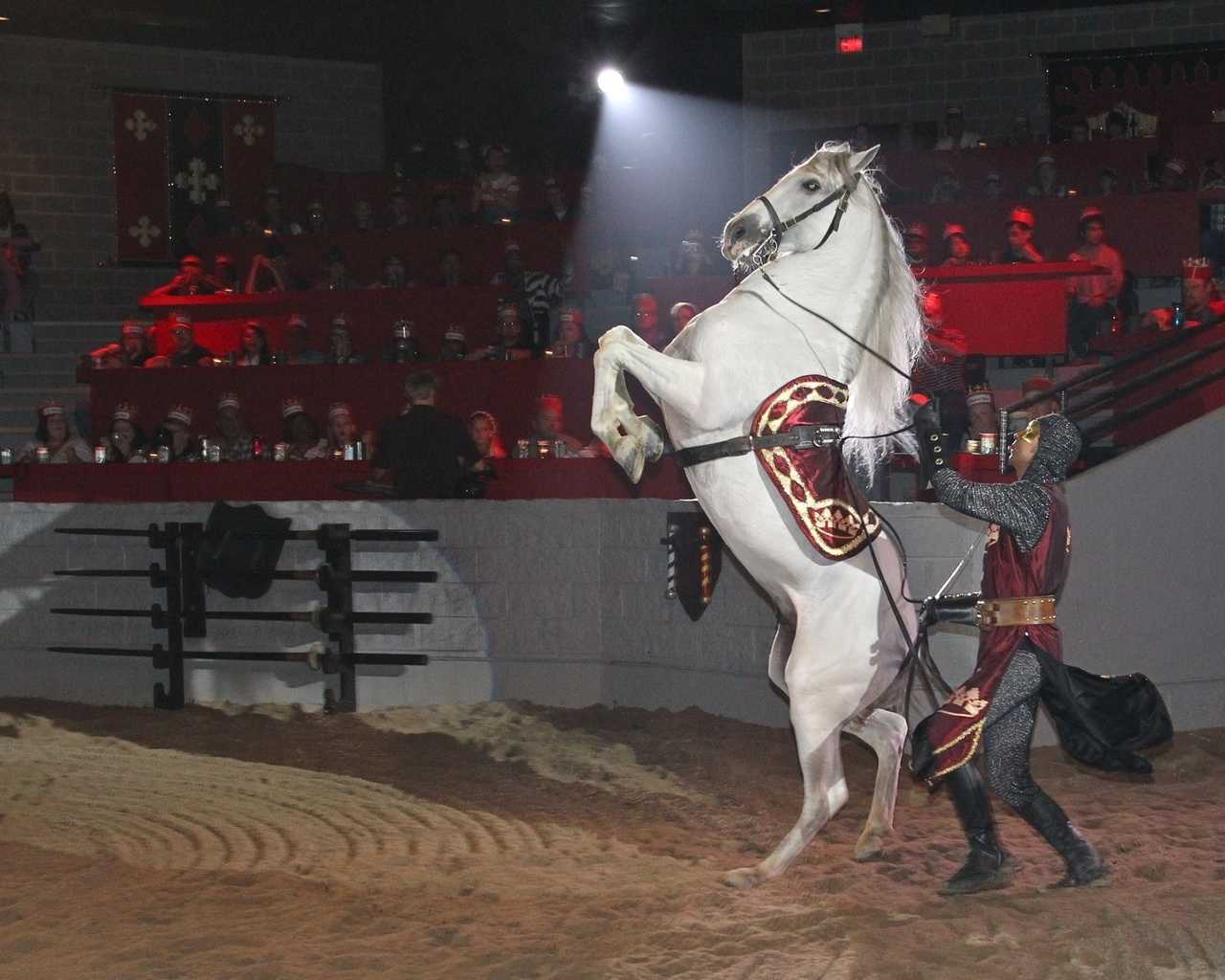 Are you looking for a unique field trip for your classroom, homeschool group or summer camp? Then check out a Medieval Times Educational Show in Buena Park, California! Imagine a history lesson presented by A King and his Noble Court set within the walls of an 11th century-style castle. Every detail is painstakingly recreated as your students take a personal journey back to the Middle Ages.