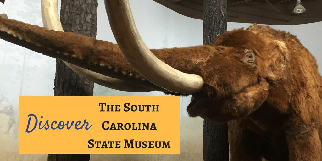 The South Carolina State Museum features four floors of permanent exhibits on history, art, natural history and science and technology. Explore the diverse and exciting history of South Carolina through fascinating displays on dinosaurs, pre-historic fossils, the Revolutionary War, the Civil War, African-American history and more. You'll find South Carolina art featured across all four floors of exhibit galleries and you won't be able to miss, 'Finn', our giant pre-historic megalodon shark replica!