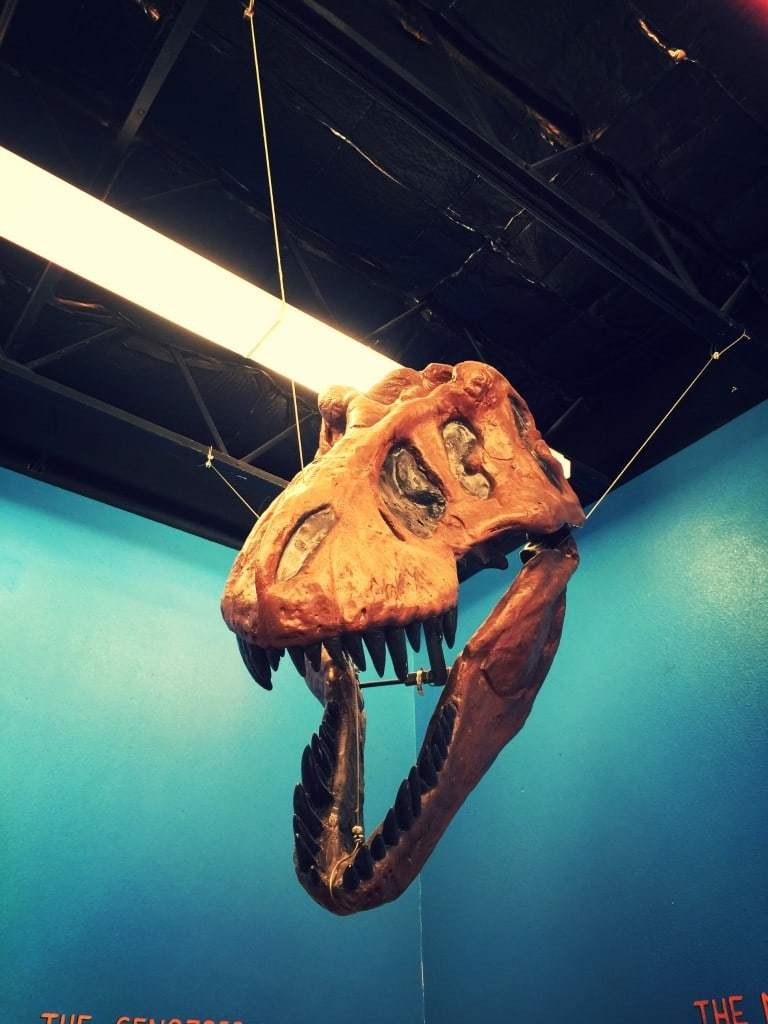 Check out this list of the Best Places To See Dinosaur Fossils in Southern California with your family!