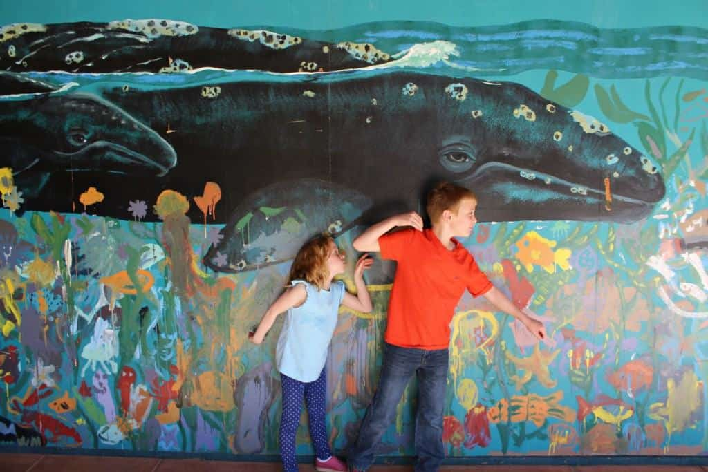 Are you planning a family vacation to San Diego? From the fine arts, including classical, contemporary and folk art, to science and natural history, San Diego offers an abundance of options for families.