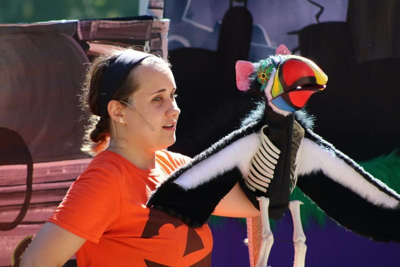 Are you looking for a fun family Halloween event in Los Angeles? Then attend Boo at the LA Zoo where children can treat their imaginations, not their sweet tooths. You'll find spine-tingling adventure every day in October and spooktacular entertainment – including puppet shows, special animal feedings, and pumpkin carving.