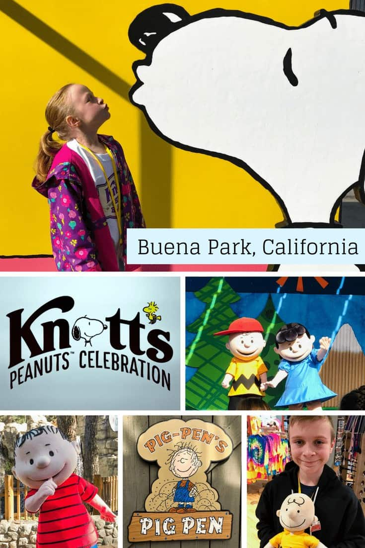 Do you love roller coasters? A Knott's Berry Farm Season Pass offers unlimited admission during the year to the theme park with no blackout dates.