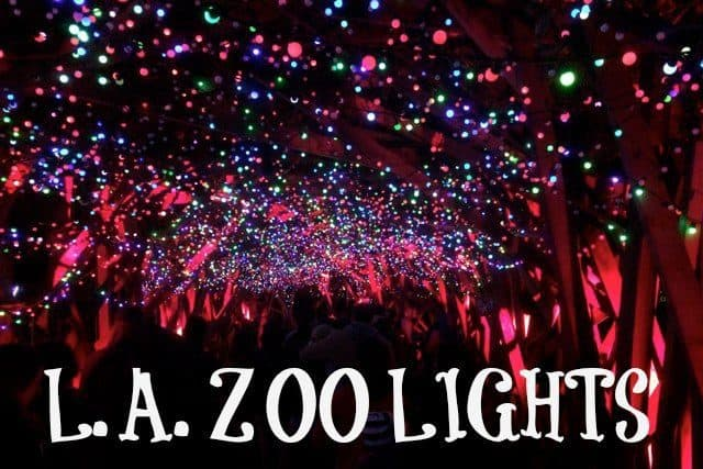 Do you want to take your family to a truly festive holiday event this year? Then check out the LA Zoo Lights with over 100,000 sparkling lights on display.