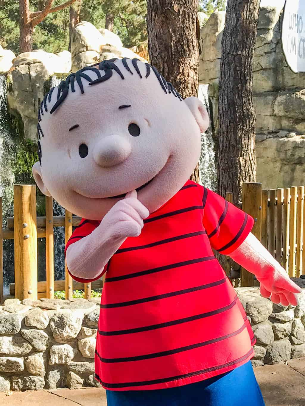 A picture of the Peanuts Character Linus sucking his thumb.