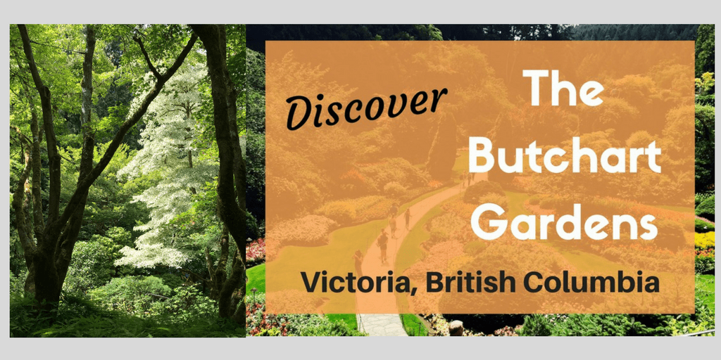 Discover The Stunning Butchart Gardens In Victoria Canada Socal Field Trips