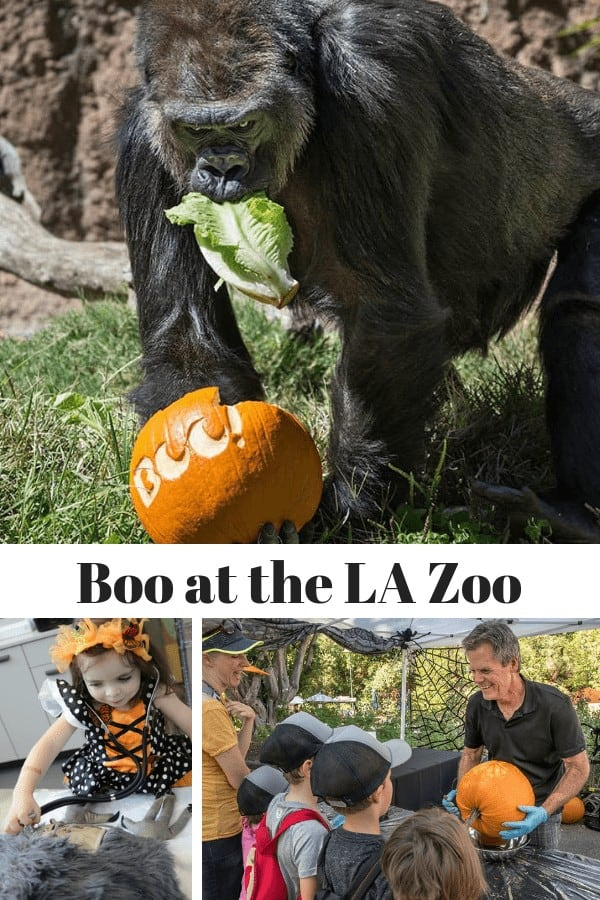 Boo at the LA Zoo Tickets