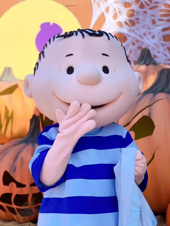 Linus at Knott's Spooky Farm in Buena Park California