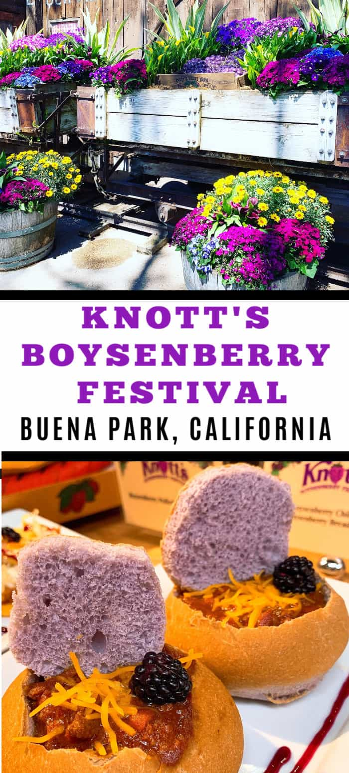 Do you enjoy food festivals? From endless boysenberry food pairings to boysenberry photo ops to a highly contentious boysenberry pie-eating contest, there is something for everyone at the Knott's Boysenberry Festival in Buena Park. #knotts #travel #california #boysenberry #boysenberryrecipe #familytravel
