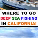 Are you among the many fishing enthusiasts in California who have tried their hand at both freshwater and saltwater fishing? As a huge state with a beautiful coastline, California offers you numerous opportunities to enjoy both inshore and offshore fishing activities. Here's a little guide to the best places to go deep sea fishing in California. Click here to learn more.