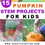Are you looking for a fun pumpkin science experiment to do with your kids or classroom? Check out these 15 Easy Pumpkin STEM Projects For Kids! From making pumpkin oobleck to exploding pumpkin volcanos, there's bound to be at least pumpkin science project every child will love.