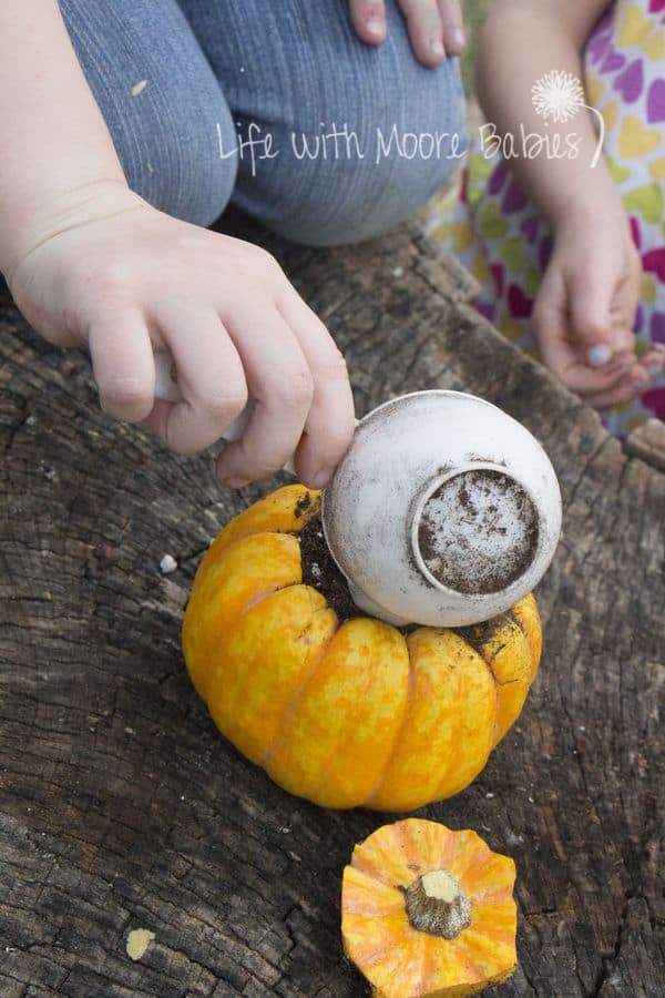 Pumpkin Science Experiment for Preschool