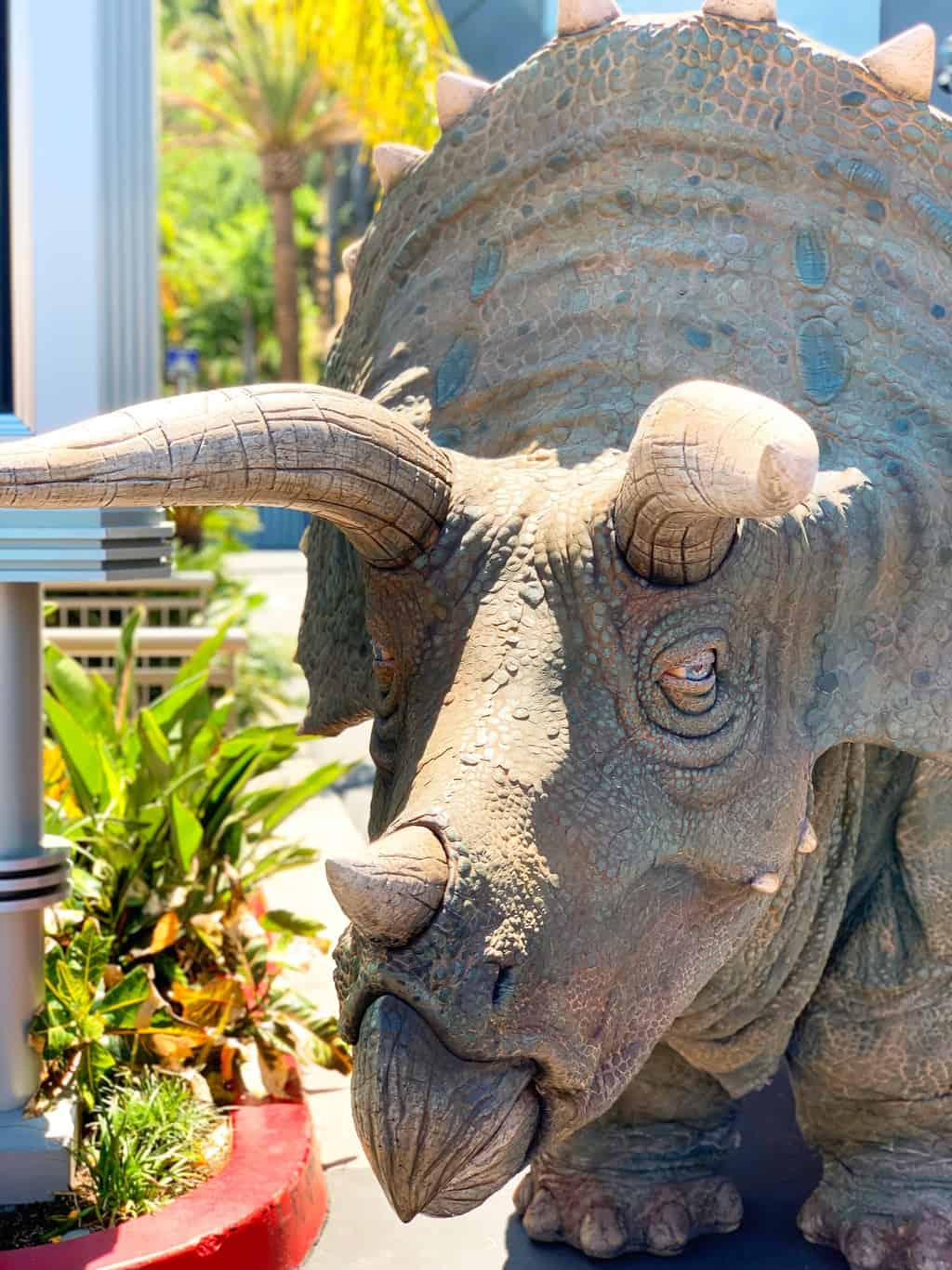 Triceratops at Raptor Encounter at Universal Studios Hollywood