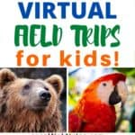 101 Virtual Fields Trips For Homeschoolers