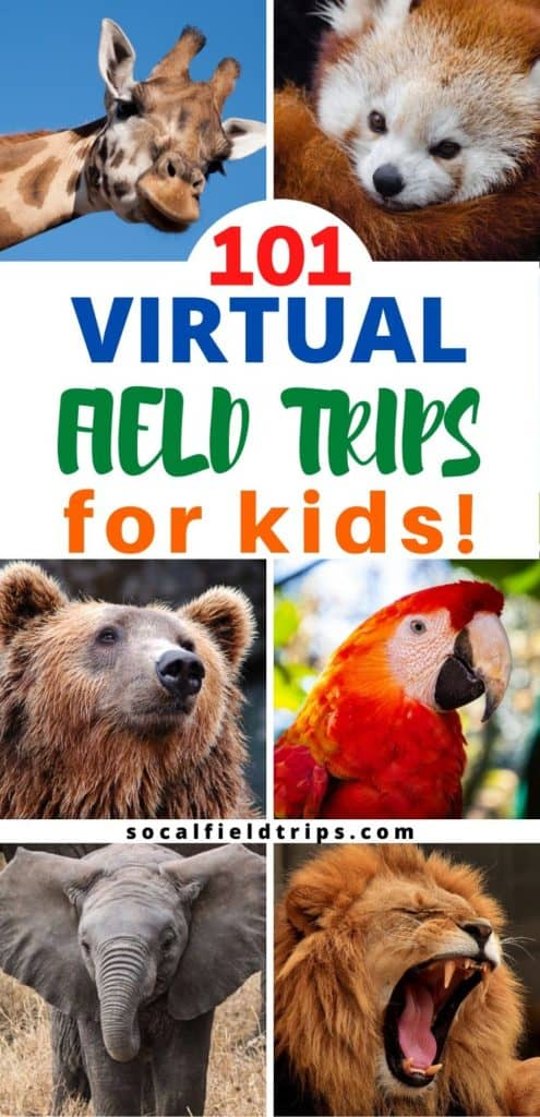 101 Virtual Fields Trips For Homeschoolers