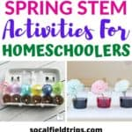 15 Spring STEM Activities For Homeschoolers