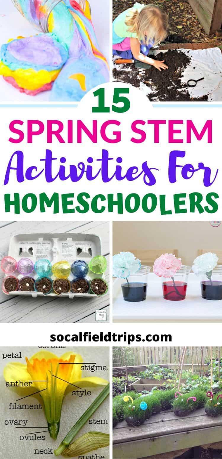 15 Spring Stem Activities For Homeschoolers Socal Field Trips