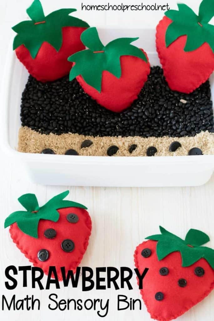 Strawberry Sensory Bin For Preschool
