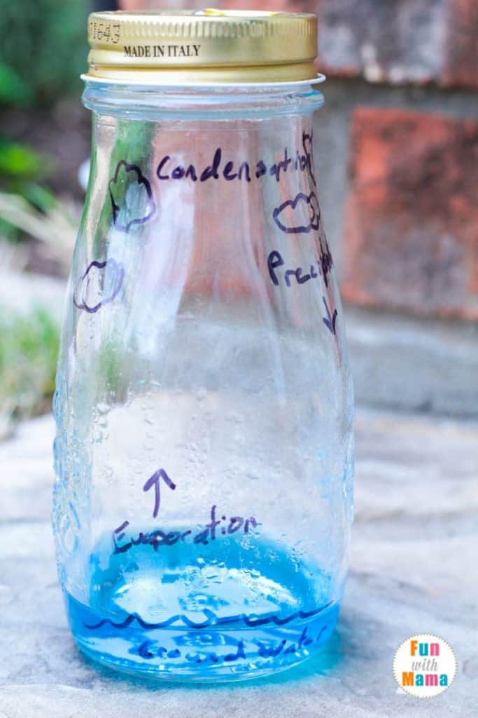 Water compensation science experiement for kids