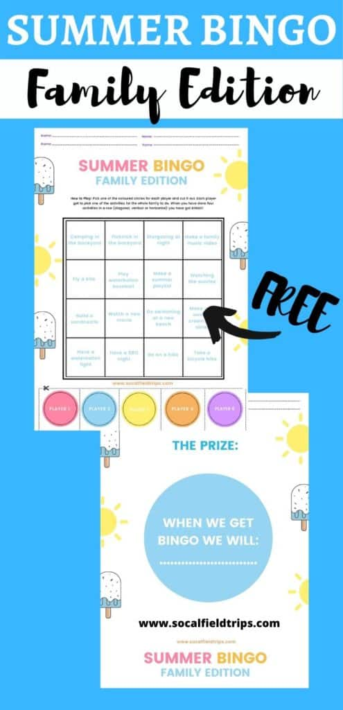 Family Summer Bingo Game with Free Printables