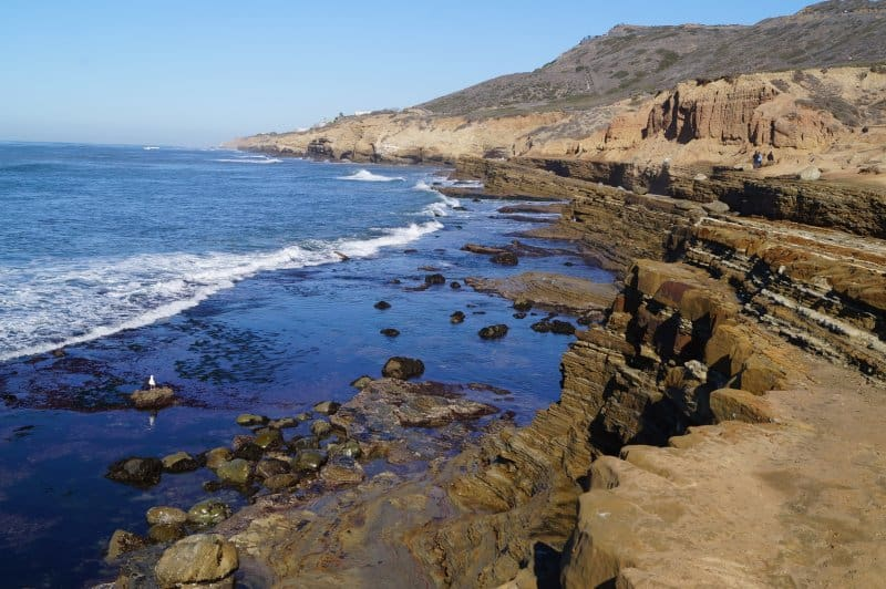 Point Loma Tidepools in California